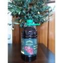 Caja de 4 botellas de 2 litros de AOVE cosecha temprana